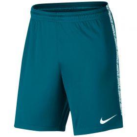 Nike Dry Squad Shorts - Blustery/White/White