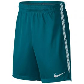 Nike Dry Squad Shorts - Blustery/White/White - Kids