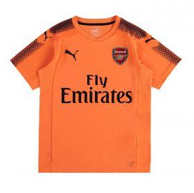 Arsenal Away Goalkeeper Shirt 2017-18 - Kids - Short Sleeve with Cech 33 printing