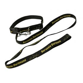 BVB Pet Collar and Lead - Small