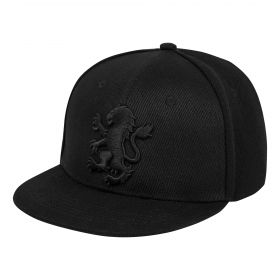 Aston Villa Tonal Lion Snapback - Black - Junior