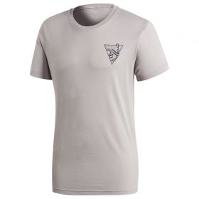 Argentina Graphic T-Shirt - Grey