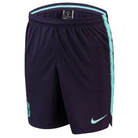 Barcelona Squad Training Shorts - Purple