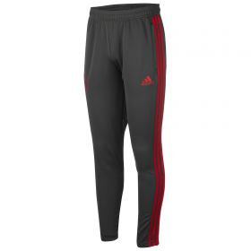 Bayern Munich Training Pant - Dark Green