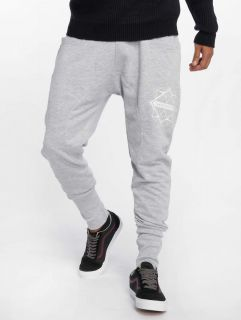Bangastic / Sweat Pant Birds in grey