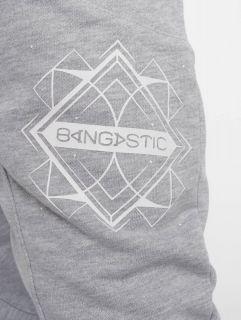 Bangastic / Sweat Pant Birds in grey