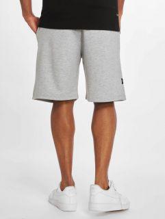 Rocawear / Short Fleece in grey
