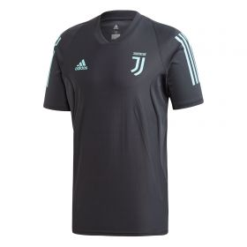 Juventus UCL Training Jersey - Grey