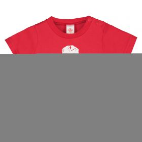 Welsh Rugby T-Shirt - Red