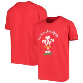 Cymru Am Byth Logo T-Shirt - Kids
