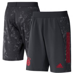 FC Bayern Cup Training Shorts - Grey