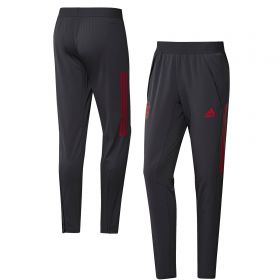FC Bayern Cup Training Pants - Grey