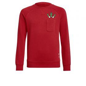 Arsenal Crew Sweater-Red-Kids