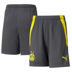 Borussia Dortmund Training Shorts-Grey-Kids