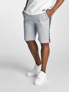 Thug Life / Short Twostripes in grey
